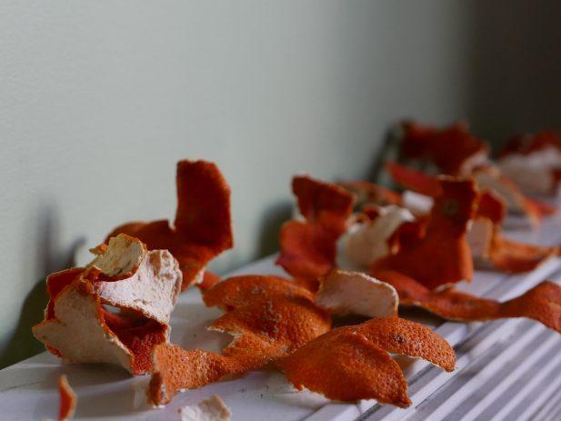 Dried orange peel scraps