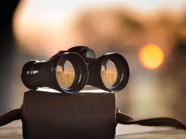 Binoculars sitting on their case
