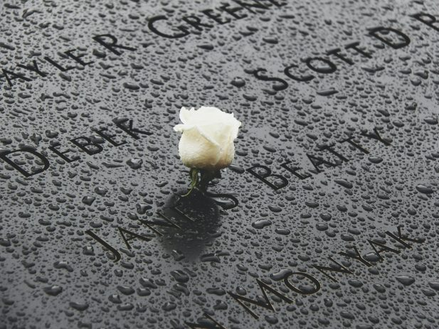 Memorial with white rose on it