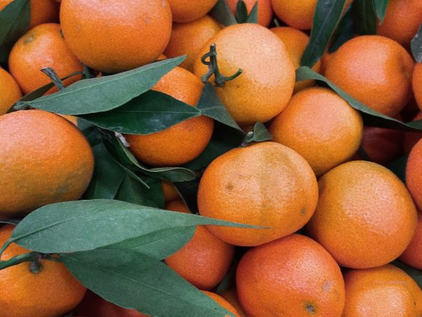 pile of oranges with leaves