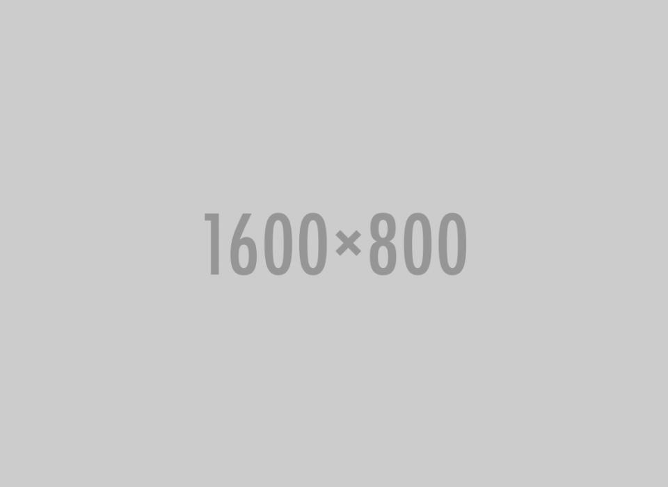 1600X800