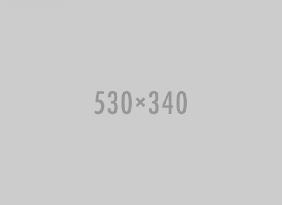 530X340