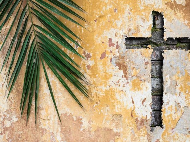 Palm branch and cross